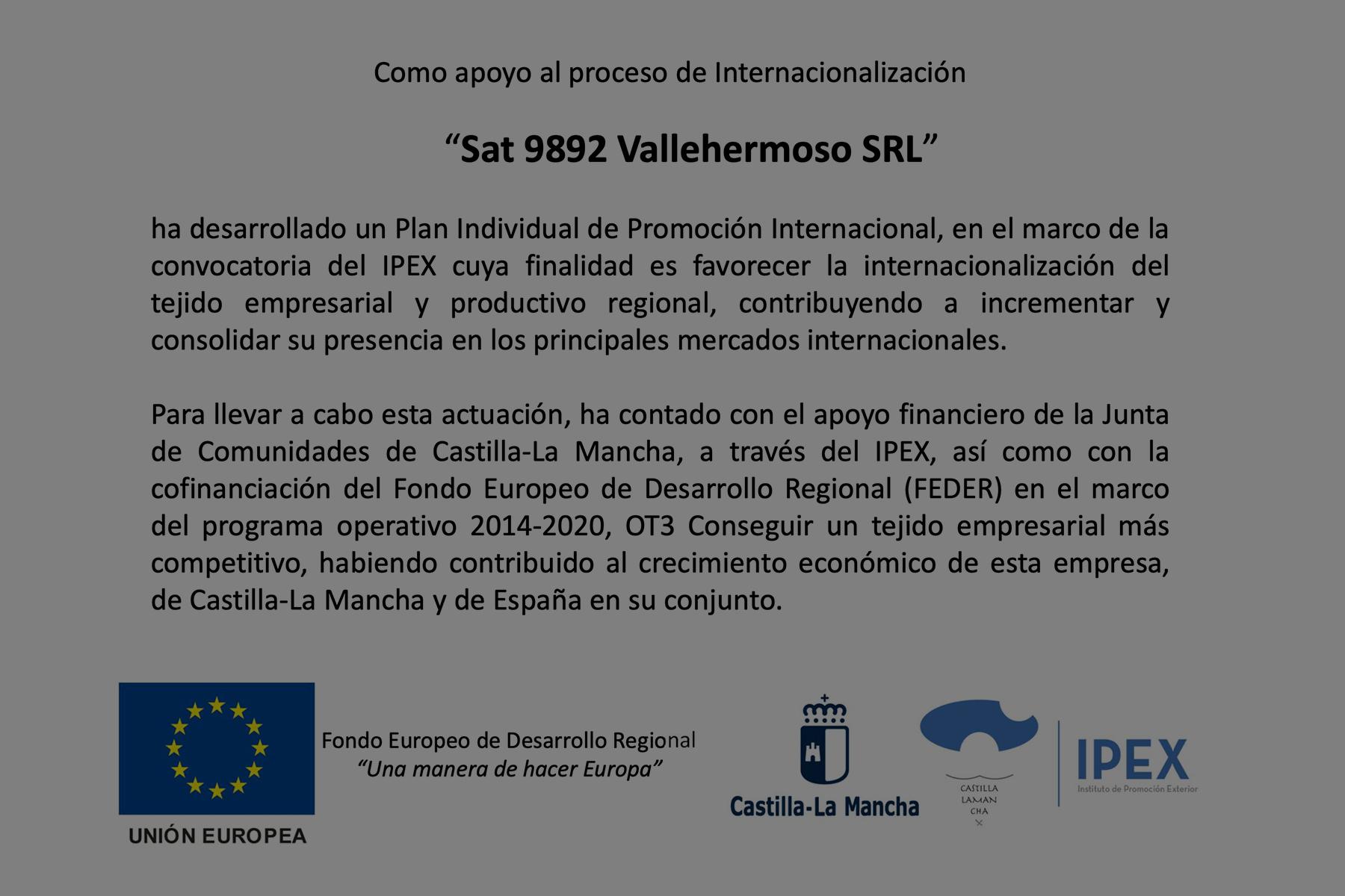 Plan individual de promoción internacional