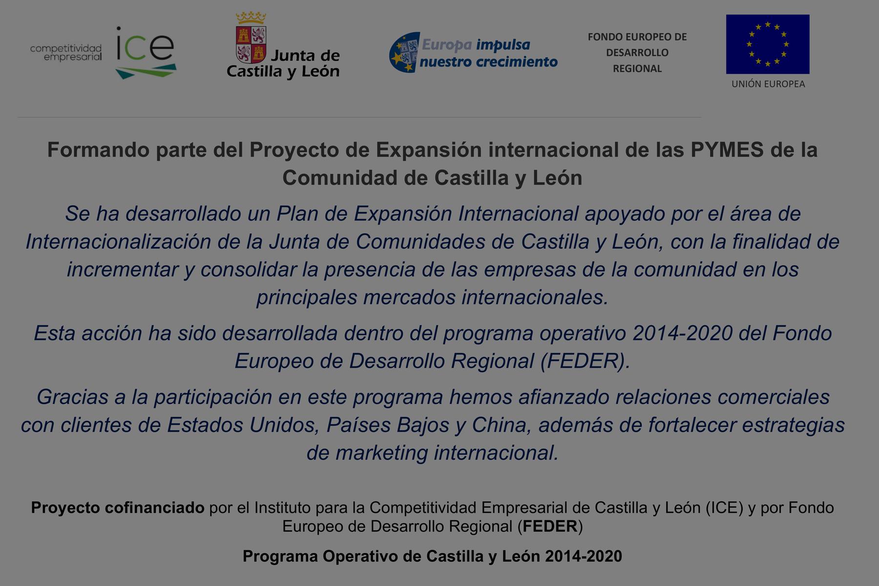 Proyecto de Expansión internacional de las PYMES de la Comunidad de Castilla y León