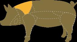 Cabecero con presa ibérico